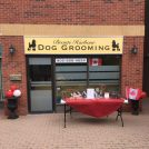 Bronte Harbour Dog Grooming