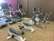 Gym and Cardio work out Oakville